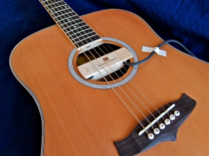 Tanglewood TW28-CLN + SD Woody – teaser